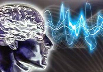 Тайная сила исцеления — ритмы головного мозга: Бета, Альфа, Тета, Дельта. В чем разница слушать и работать в Рэйки?
