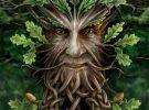 Гороскоп друидов – какое вы дерево по гороскопу друидов. Кельтский гороскоп совместимости. Астрология