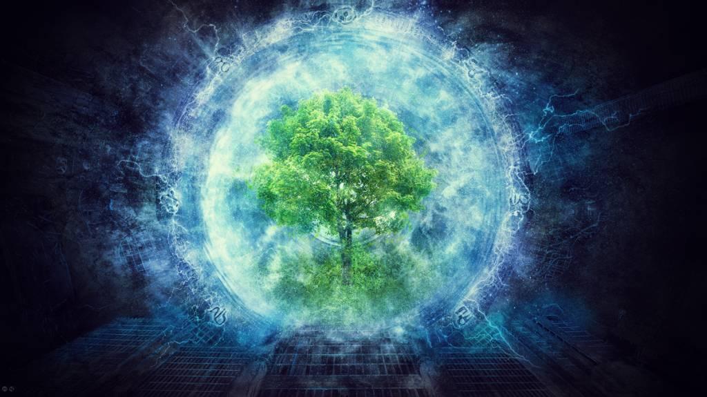 телеведущая энергия дерева картинки это